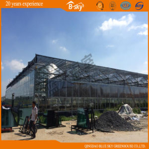 High Quality Greenhouse Covered by Polycarbonate Sheet and Glass pictures & photos