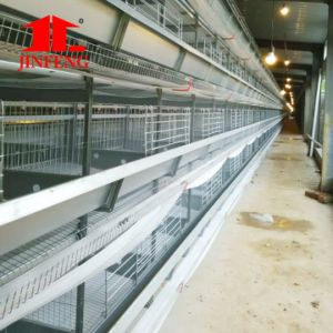 H Type Chicken Cage for Layer Chicken Farm pictures & photos