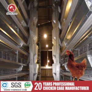 Chicken Layer Cages From Poultry Equipment Supplier Manufacturer
