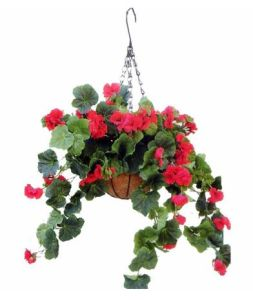 70cm Artificial Begonia with Hanging Basket