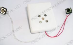 Sound Module for Plush Toy, Sound Module, Voice Recorder pictures & photos