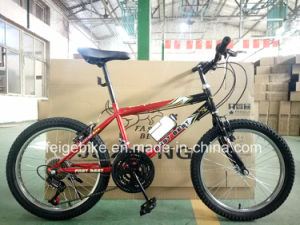 "Manufacture 18 Speed Student MTB 20"" Mountain Bike (FP-KDB-17091) pictures & photos"