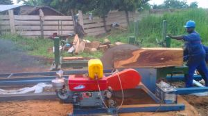 Portable Wood Double Saw Blade Angle Circular Sawmill for Sale