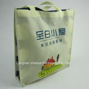 Non Woven Recycle Bag, Packaging Bag pictures & photos