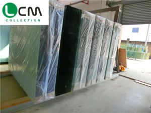 Solar Panel Building Glass Igu Construction Glass Insulated Glass Window