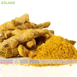 Natural Food Additives Turmeric Yellow Powder