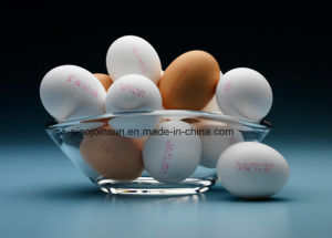 Egg Surface Printing Small Character Inkjet Ink