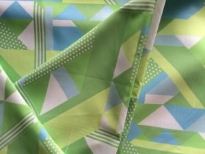 Geometric Printing Polyester Fabric for Windproof Jackets pictures & photos