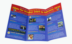 Tri-Folded Printing Brochure &Leaflets (YY-B0029) pictures & photos