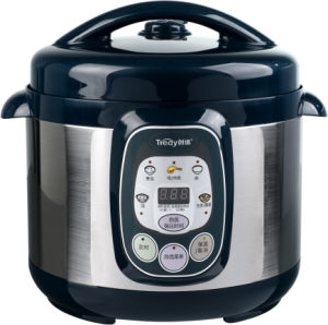 Digital Electric Pressure Cooker (YBW80-120AG)