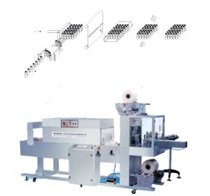 automatic PE film thermal wrapper, automatic shrink packaging machine, film packing machine, bottle packaging machine pictures & photos