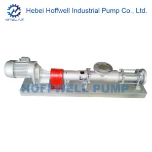CE Approved G Series Helical Rotor Single Screw Pump pictures & photos