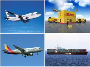International Freight Forwarding Agent to USA