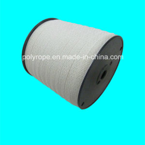 White High Quality Electric Fence Polytape pictures & photos