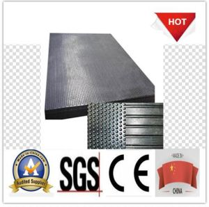Best Quality Stable Rubber Matting