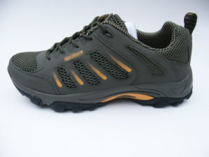 Ventilate Sports Shoes for Summer pictures & photos