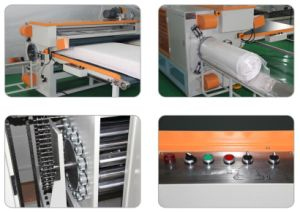 Mattress Wrapping Machine Mattress Roll-Packing Machine (XB-9W) pictures & photos
