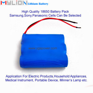 Hight Quality Lithium Battery for Electronic Products Cleaner etc.