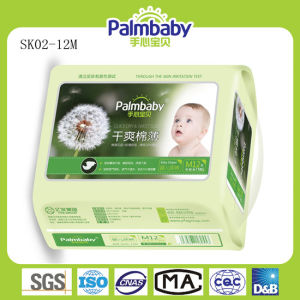 Babie Diapers pictures & photos