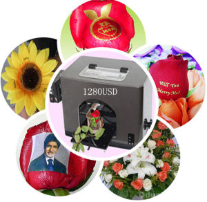 Digital Art Flower Printer pictures & photos