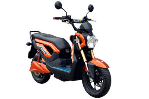 Electric Scooter Electric Bike (TDWBD575Z)