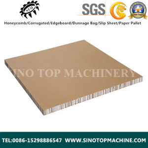 40mm Thickness Paper Honeycomb Panel pictures & photos