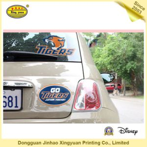 Adhesive Sticker, Car Sticker, PVC Sticker (JHXY-AS110003)