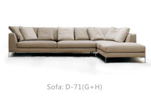 High-End Fancy Sofa of Home Use pictures & photos