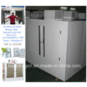 Commercial Ice Storage Freezer for Indoors and out pictures & photos