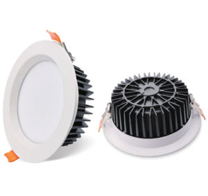 5W10W15W20W25W30W Round Ceiling COB LED Downlight