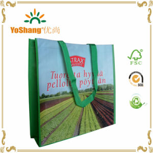environment Friendly High Quality Laminated Non Woven Shopping Bag pictures & photos