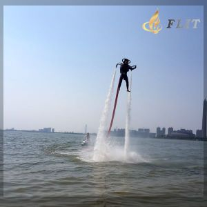 New Season Discount Outlook Standard Jetlev- Flyer pictures & photos