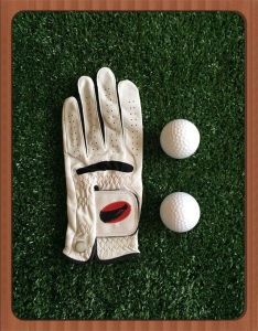Top Quality Embriodery Men′s Right Hand Golf Glove with Cadet Size