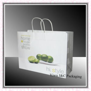 Full Printing Paper Gift Bags With Paper Twisted Handle (JCBB-1068)