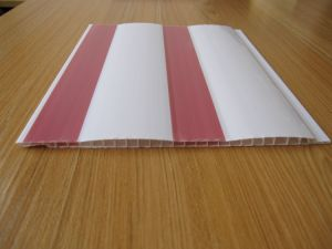 PVC Panels pictures & photos