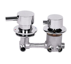 Five Way Faucet (AB-5012)