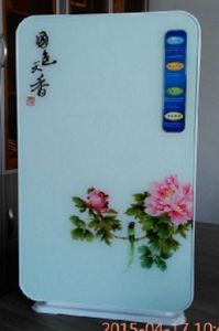 Glass Tempering Panel Air Purifier