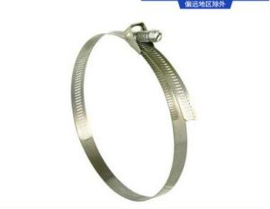 High Pressure Stainless Steel Quick Release Hose Clamps pictures & photos