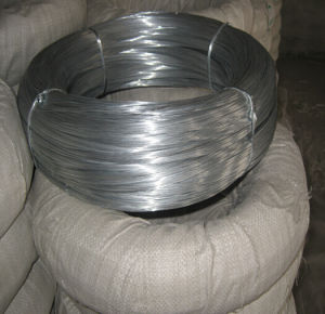 Bwg 20 Electric Galvanized Iron Wire Price pictures & photos