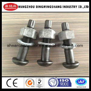Round Head /Cup Head Tension Control Bolt A325 pictures & photos