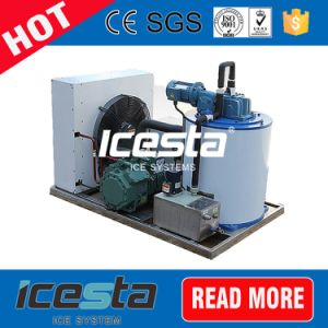 Icesta Industrial 2t Ice Maker for Fish China Supplier pictures & photos