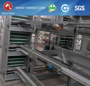 Breeding Equipment Battery Layer Chicken Poultry Cage pictures & photos