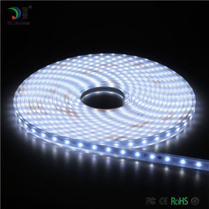 High Voltage Flexible LED Strip N1-2
