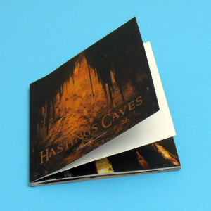 Hot Customized Nice Softcover Full Color Book Print on Demand