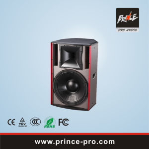 Loudspeaker System for Music Hall Karaok Club pictures & photos