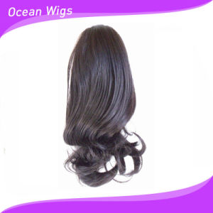 China Synthetic Hair Ponytail Holder (SE-059) - China Synthetic Hair ... 982ef5c81f1