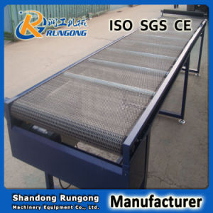 Stainless Steel Conveyor Supplier