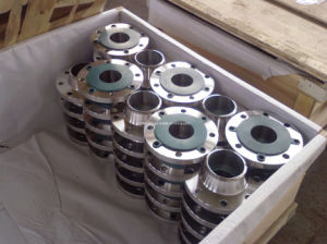 Steel Forged Flanges pictures & photos