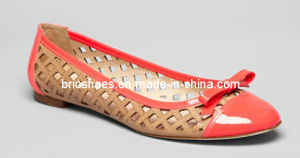 Attractive Women Summer Flat Shoes (style no. WP92608)