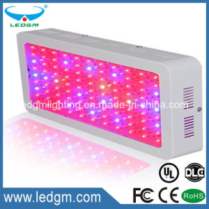 Agricultural Equipment Lighting 100-120W Square LED Lamp Hydroton Hydroponic pictures & photos